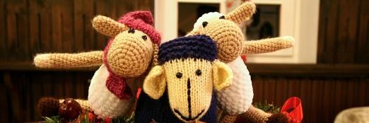 3. ročník charitativní akce Každá ovečka se počítá